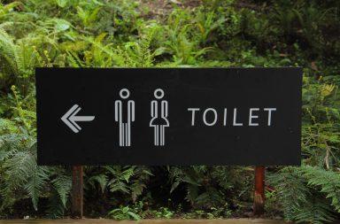 10 rzeczy, których NIGDY nie można wyrzucać do toalety-wodkany