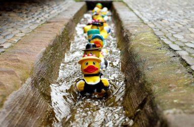 Niezawodny sposob na poprawienie kultury mieszkancow na korzystanie z kanalizacji -2