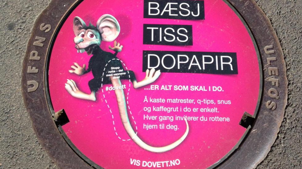 Niezawodny sposob napoprawienie kultury mieszkancow nakorzystanie zkanalizacji - Bæsj, Tiss, Dopapir
